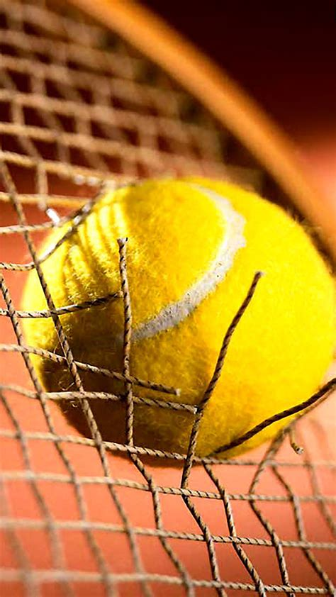 Tennis Ball : 1 Wallpaper for iPhone X, 8, 7, 6 - Free